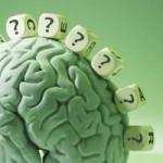 Что такое нейропластичность?