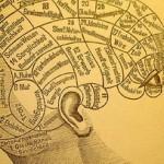 Френология, или Наука, которой удалось всех надуть