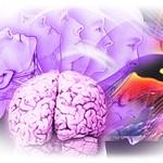 Психоаналитические теории развития