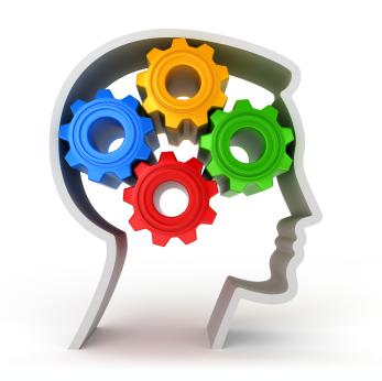 Мозг и поведение