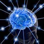 Квашук Владимир — Основы Нейропсихологии